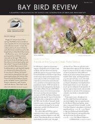 Summer 2011 - San Francisco Bay Bird Observatory
