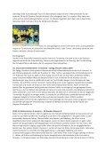 Chronik des Jahres 2011 - Stadtverband Fußball Dresden eV - Seite 7
