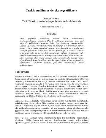 Turkin mallinnus tietokonegrafiikassa - TML
