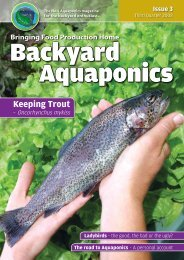 Keeping Trout - Backyard Magazines