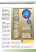 Keeping Trout - Backyard Magazines - Page 7
