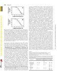 Interaction of Barbiturate Analogs with the Torpedo californica ... - Page 6