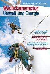 Magazin: Wachstumsmotor Umwelt und Energie - BMU