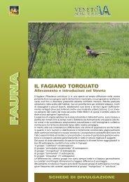 fagiano torquato E323.indd - Veneto Agricoltura