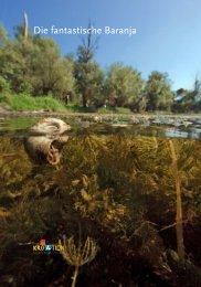 Die fantastische Baranja - Business - Hrvatska turistička zajednica