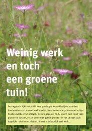 Weinig werk en toch een groene tuin! - Piekobello Tuinontwerp