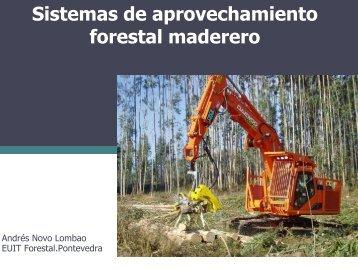 Sistemas de aprovechamiento forestal maderero