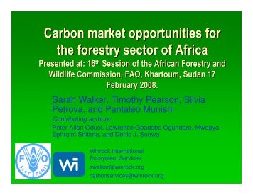 Carbon market opportunities for the forestry sector of Africa