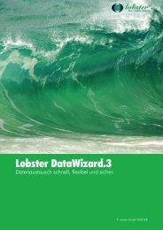 Lobster DataWizard.3 - Lobster GmbH