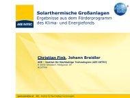 Solare Großanlagen_Fink.pdf (1,6 MB) - bei AEE - Institut für ...