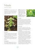 """""""vilda grönsaker"""" här också - Page 7"""