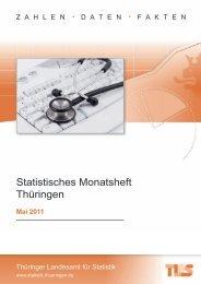 Bestell Nr: 40301P 201105 - Thüringer Landesamt für Statistik ...