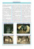 sonderdruck aus tierärztliche umschau - Borna-Borreliose-Herpes - Page 5