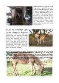 Noteselkurier - Noteselhilfe - Seite 5