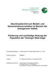 Abschlussbericht zum Modell- und Demonstrationsvorhaben ... - BLE