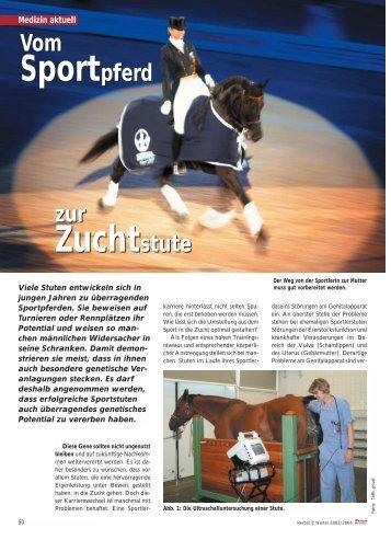 Vom Sportpferd zur Zuchtstute - Tierklinik Kaufungen