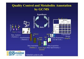 Quality Control and Metabolite Annotation by GC/MS - Metabolomics ...