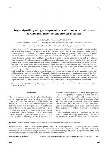 Sugar signalling and gene expression in relation to - Indian ...