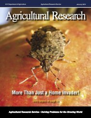 AR Magazine, January 2011 - Agricultural Research Service - US ...