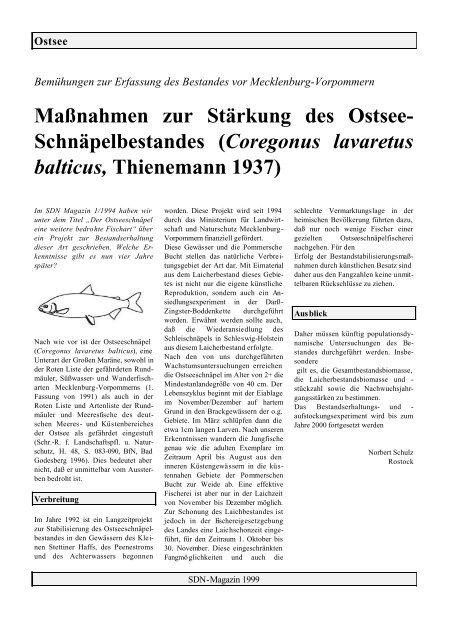 Maßnahmen zur Stärkung des Ostsee- Schnäpelbestandes ...
