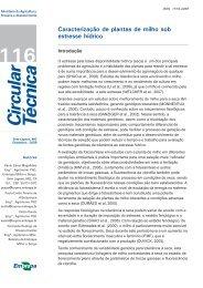 Circ_116 PCesar.p65 - Embrapa Milho e Sorgo