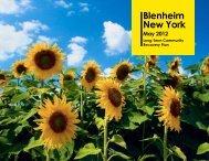 Blenheim Long Term Recovery Plan Document - Schoharie County