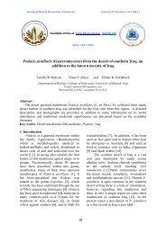 4 - Basra-science-journal.org