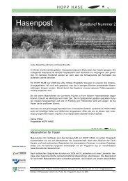 Hasenpost Rundbrief Nummer 2 - Hintermann & Weber AG