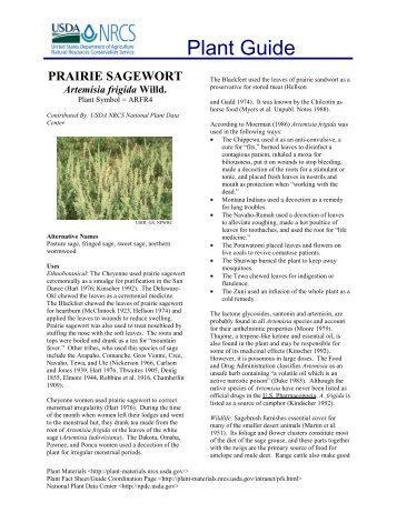 PRAIRIE SAGEWORT - USDA Plants Database - US Department of ...