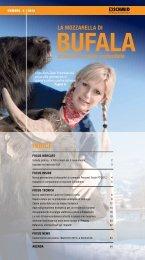 Edizione 2/2012 - Schmid AG