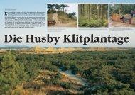 Die Husby Klitplantage - Coast Alive