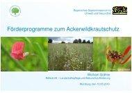 Wolfram Güthler - Förderprogramme zum Ackerwildkrautschutz