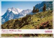Caprice Wellness -Oase - Hotel Caprice - Grindelwald