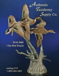 download - Authentic Taxidermy School & Taxidermy Supply