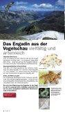 Die Landschaft Oberengadin aus der Vogelschau - Seite 4