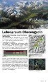 Die Landschaft Oberengadin aus der Vogelschau - Seite 5