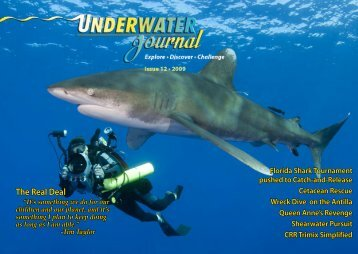 Issue 12 - Stingray Divers