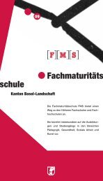 FMS Flyer Baselland 09 - Gymnasium Oberwil