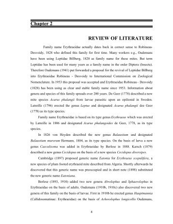 review of literature example