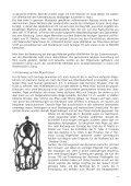Grundzüge der europäischen Wallfahrtsgeschichte - Haus zum Dolder - Page 4
