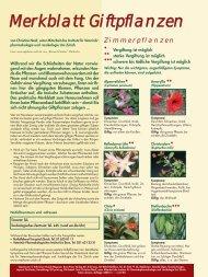 Merkblatt Giftpflanzen» des Katzenmagazins - Hausinfo