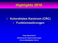 Download Referat PDF [1.95 MB] - GastroHighlights