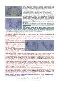 pdf (0,27 MB) - Page 5