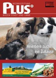 SOS: Heimtiere suchen ein Zuhause - Zu den Bezirkszeitungen