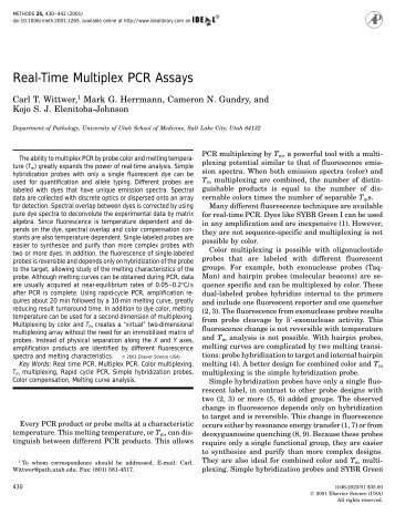 Real-Time Multiplex PCR Assays - Department of Mathematics ...