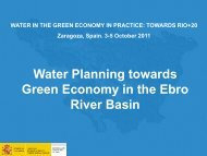 Water Planning Towards Green Economy In The Ebro