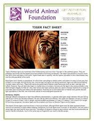 TIGER FACT SHEET - World Animal Foundation