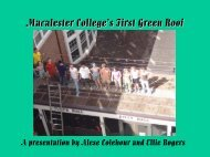 Green Roof Project - Macalester College