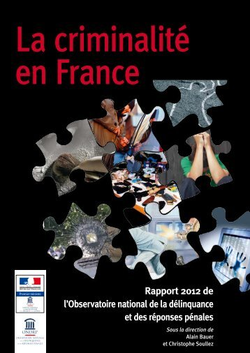 rapport_ondrp_2012_3