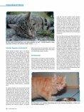 Wenn die Nieren streiken von Dr. med. vet. Claudia Möller ... - caet.ch - Seite 3